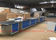 China Manufacturer Direct Lab Table / Lab Workbench Furniture / Steel Laboratory Casework fábrica