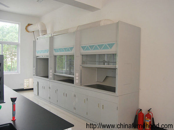Lab Equipment Fume Hood For Commercial Project From China Suppliers